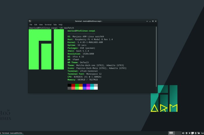 Hands-On with Manjaro Linux ARM on Raspberry Pi 4: A Gem!