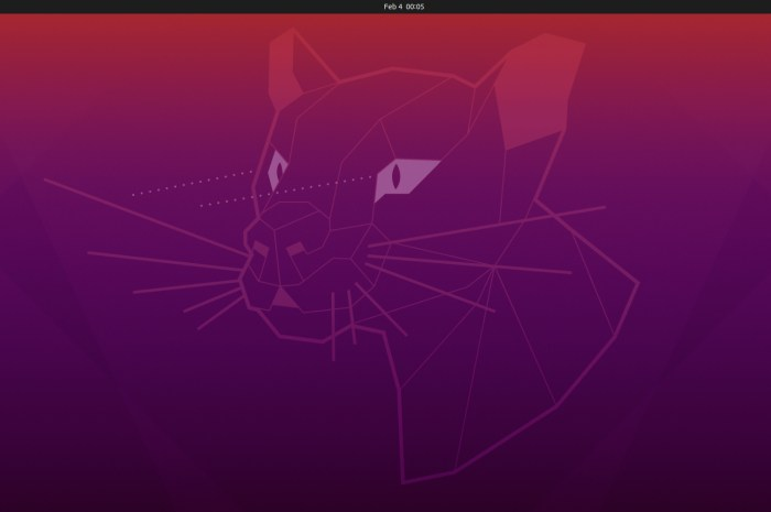 Canonical Re-Releases Ubuntu 20.04.2 LTS Desktop Images Due to OEM Install Bug