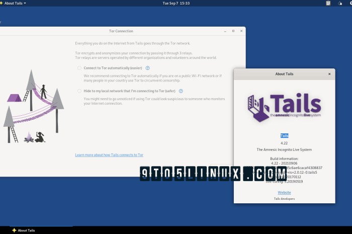 Tails 4.22 Is Out to Improve the New Tor Connection Assistant, Update AMD GPU Drivers