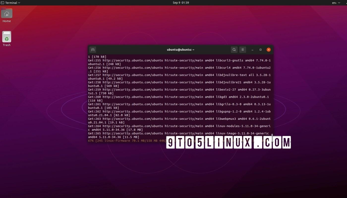 Ubuntu Security Updates
