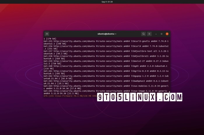 Another Batch of Important Linux Kernel Security Updates Arrives for Ubuntu Users, Patch Now