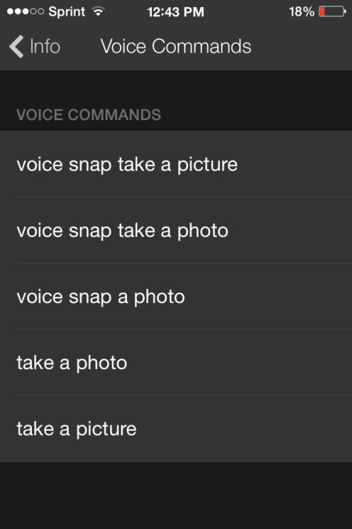 vs voice commands