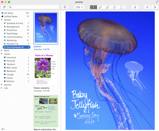 Notability 1.0 on Mac - library open