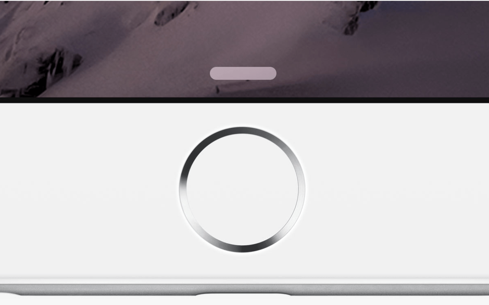 Rumor says Touch ID coming to MacBooks and Magic Mouse/Trackpad for Apple Pay, but there are roadblocks