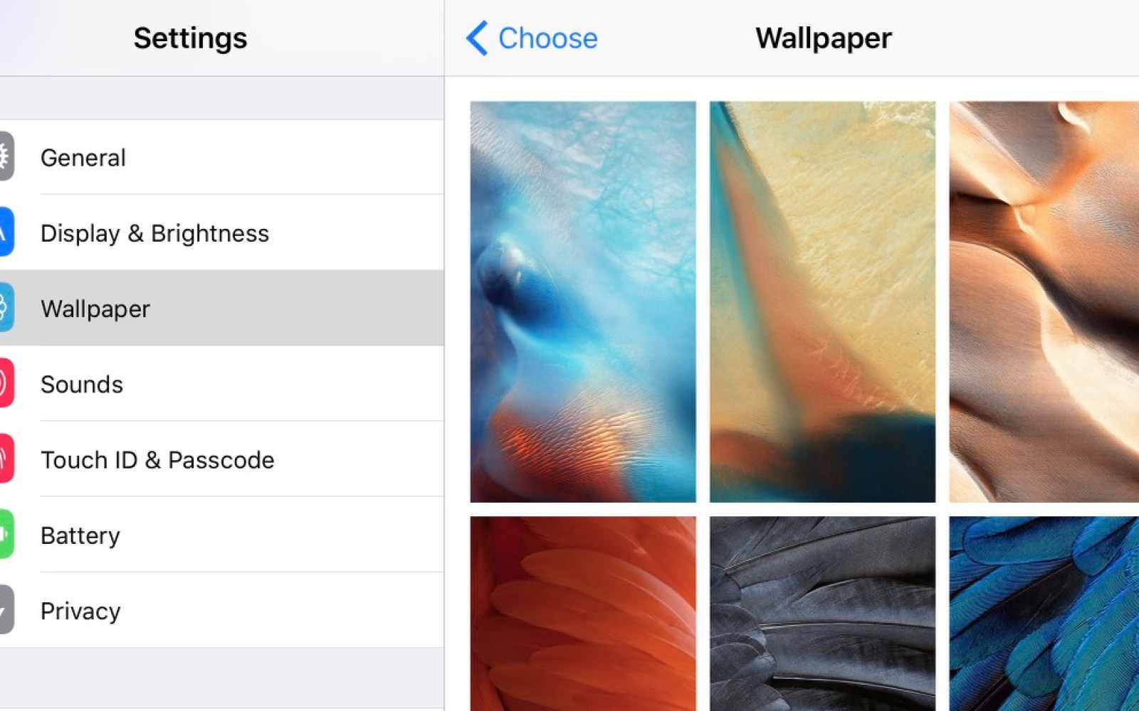 Here are all of iOS 9's colorful new wallpapers for your iPhone