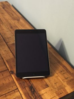 iPad Mini fits in the Zand in portrait orientation.