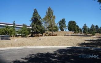 Apple-Park-Campus-2-June-landscaping-04