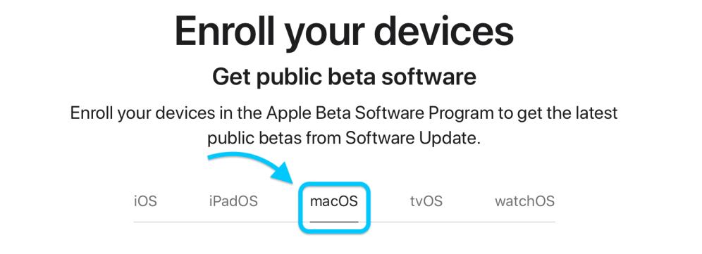 how-to-install-mac-os-big-sur-public-beta-2
