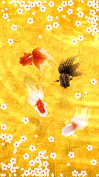 Wa Kingyo - Goldfish Pond-sale-01