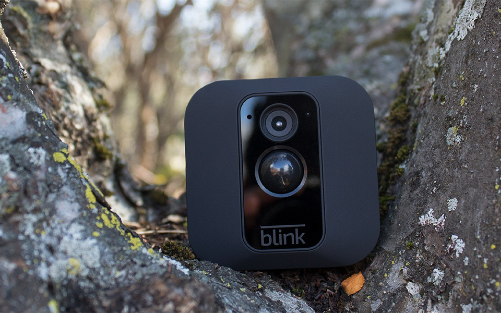 The Blink XT Outdoor Security Camera brings up to two years of battery life and free cloud storage