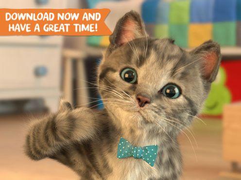 Little Kitten- My Favorite Cat-5