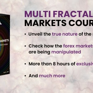 Multi Fractal Markets Advance Course