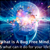 Creating a Bug Free Mind Andy Shaw- 9WSO Download