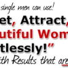 The Oneder System Mans Guide to Getting Your 100 Perfect Girl- 9WSO Download