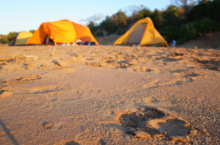 Olifants backpacking trail at Kruger National Park