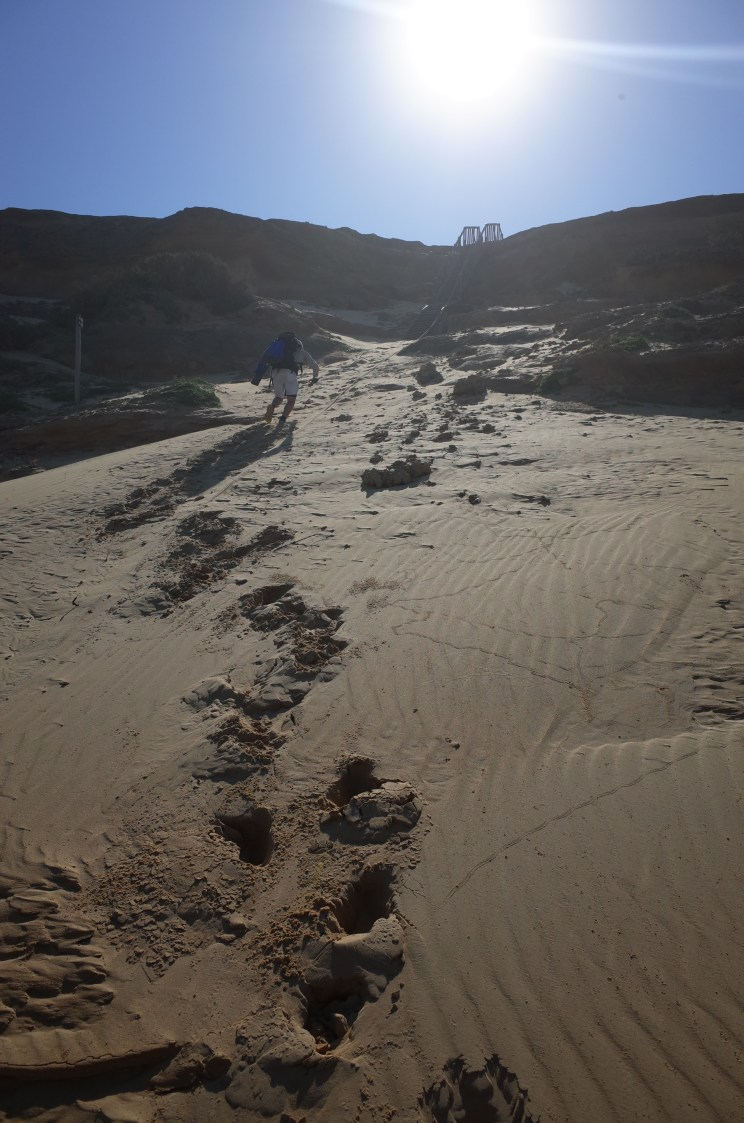 Alexandria Trail, Addo, Woody Cape, Garden Route, South Africa