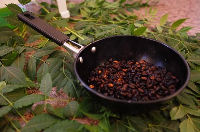 roasting bunna beans in Ethiopia