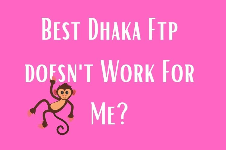 Dhaka FTP Server doesn't work for me