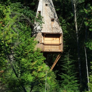 Visit the Islandwood Treehouse