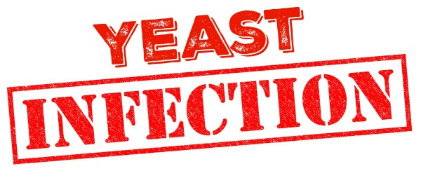 Yeast Infection image for humorous spider story