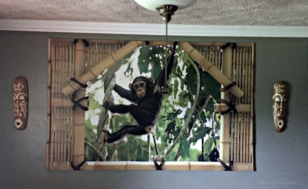 Jungle theme boy's bedroom home decor