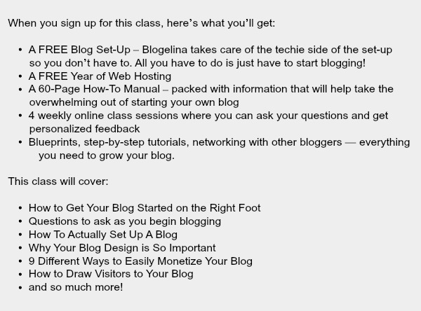 Blogelina Profitable Blogging for Beginners class