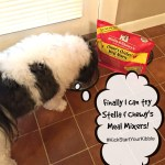Stella & Chewy's Meal Mixers #KickStartYourKibble