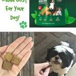 Dog treats that promote a healthy lifestyle like TopDogDinners Herbal Dog Treats