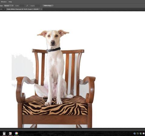 Zelda Sillon Fondon Blanco - Photoshop Seleccion