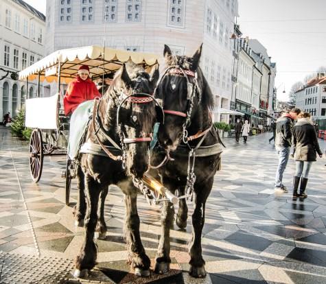 Copenhagen Dec 2015 (29 of 66)