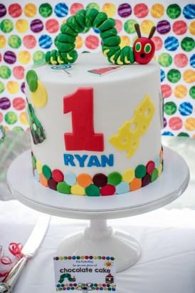 Ryan's First Birthday (15 of 22)