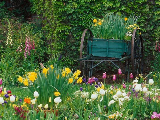 Janet and Joe have a Beautiful Garden