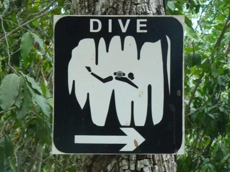 Plongée en caverne pour les plongeurs certifiés qui souhaitent découvrir un nouvel environnement.