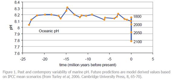 Ocean pH graph