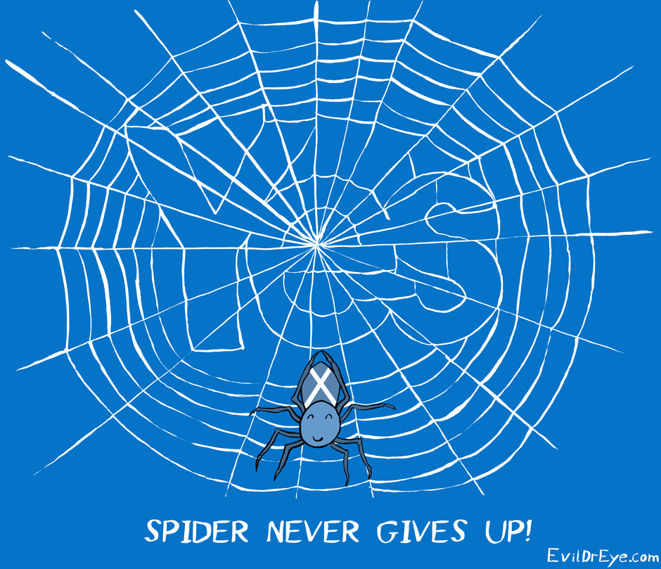 Spider never gives up!