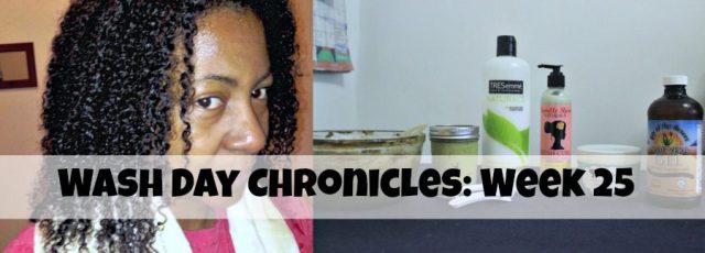 wash day chronicle
