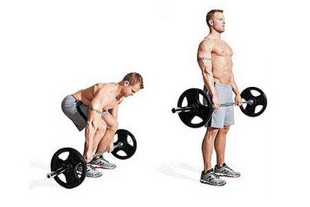Testosteroniin vaikuttava liikunta