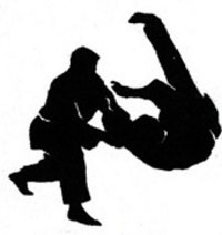 Hapkido throw