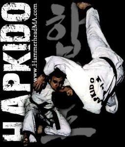 Hapkido throw