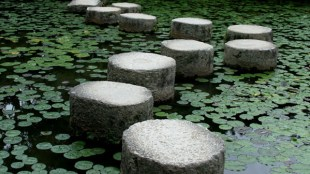 Stepping stones across a pond.
