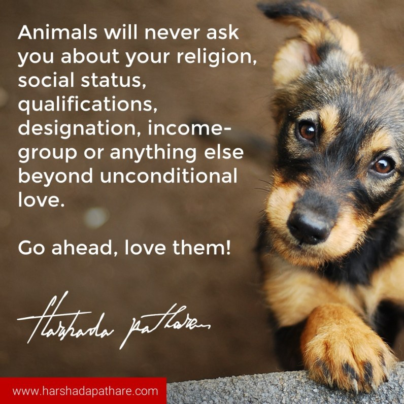 Animals never ask your relegion