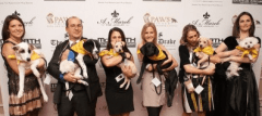 The Paw's Gala at the Drake Hotel