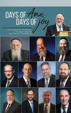 Days of Awe, Days of Joy by Hershel Schachter, Abraham J Twerski, Mayer Twersky