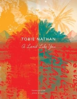 A Land Like You by Tobie Nathan