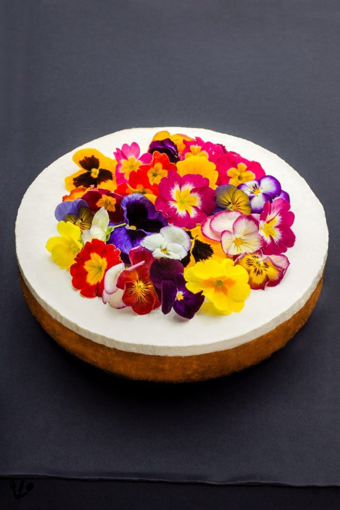 Isn't our homemade cheesecake beautiful? The single most appropriate use for edible flowers is for the cheesecake on Shavuot, when Mount Sinai was blossoming in anticipation of the Giving of the Law (Torah).