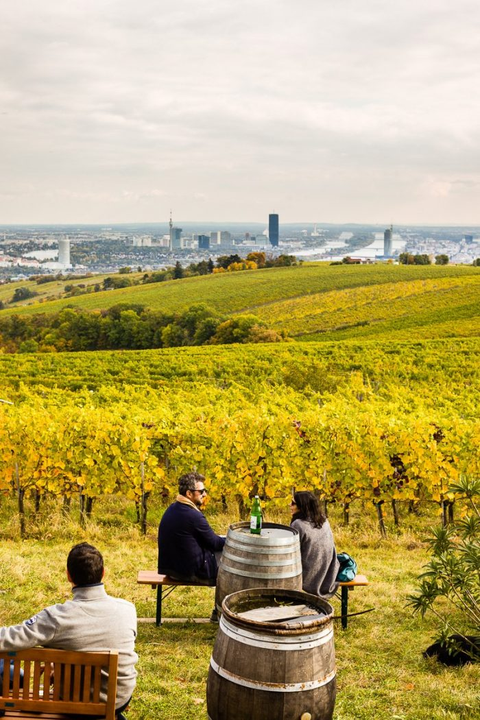 """Kahlenberg hill, overlooking the Nussberg hill and its vineyards bordering the Vienna Woods. (A picture taken from a recent post on that<a href=""""https://JewishVienneseFood.com/vienna-woods-vineyards-heuriger-scenic-view/"""" target=""""_blank"""" rel=""""noopener"""">wonderful spot</a>.)"""