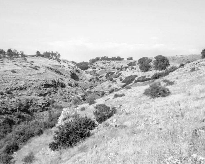 Golan Heights near Devora Waterfall