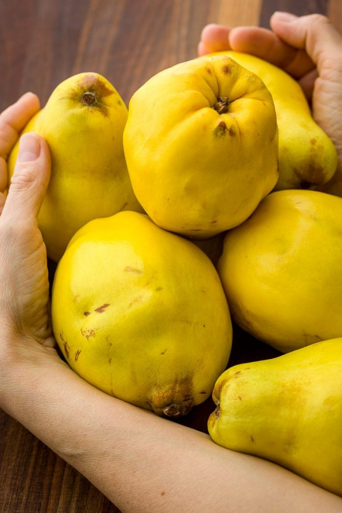 An armful of the voluptuous fruit, magnificent to look at.