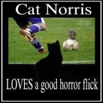 Cat Norris Loves Horror Flicks