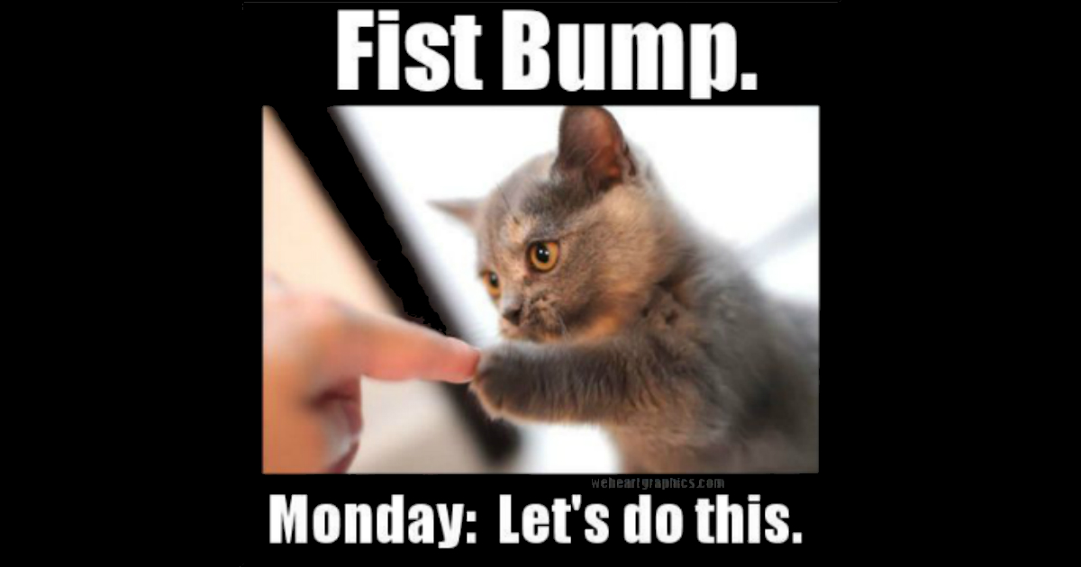 Lets Do Monday image with cat
